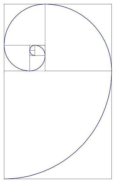 La Casa Sull Albero Basata Sulla Spirale Di Fibonacci La Splendida
