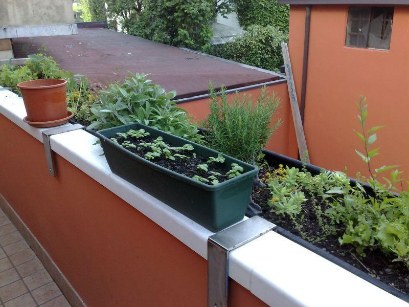 Come realizzare un orto verde sul balcone