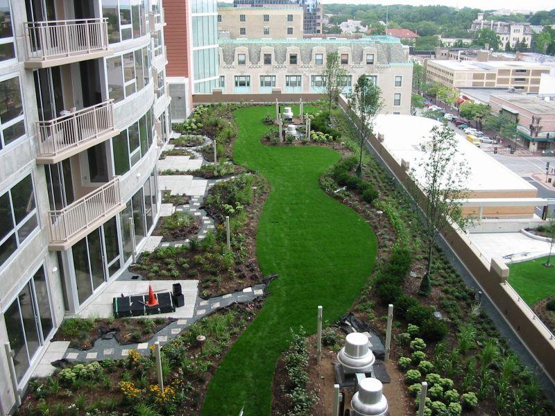 Tetti verdi i 10 vantaggi di avere una copertura ecologica - Autorizzazione condominio per ampliamento piano casa ...