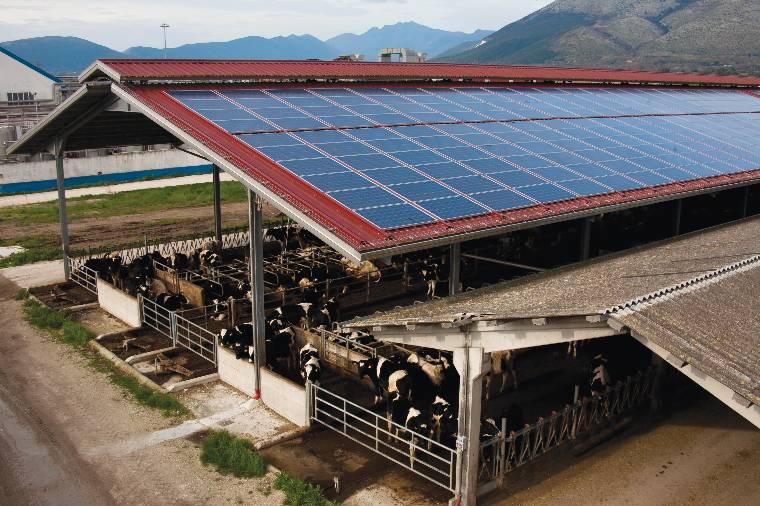 Impianti Fotovoltaici Per Risparmiare : Milleproroghe novità per aziende agricole milk the sun