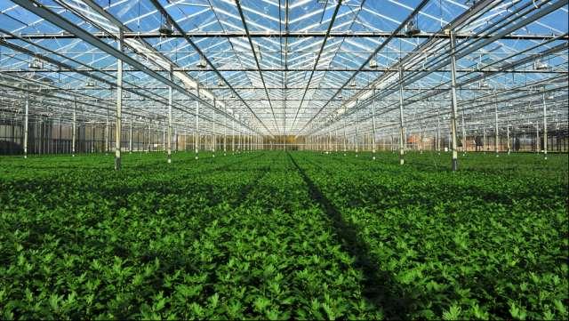 Serre agricole fotovoltaiche